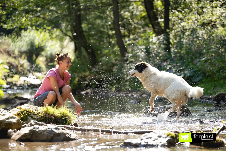 Mulher e seu cachorro no rio de verão
