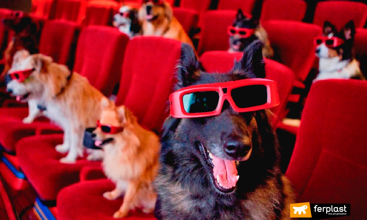 THE MOST FAMOUS ACTOR DOGS AND THEIR HISTORY