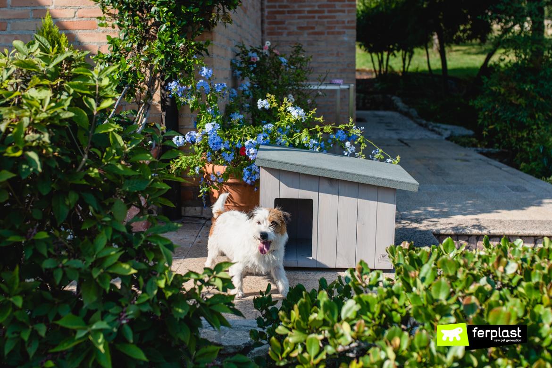 ферпласт-деревянная собачья будка