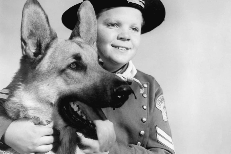qui est le chien acteur le plus celebre Rin Tin Tin