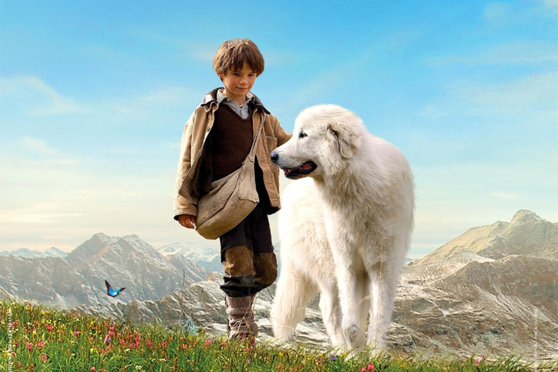 films avec des chiens acteurs connus