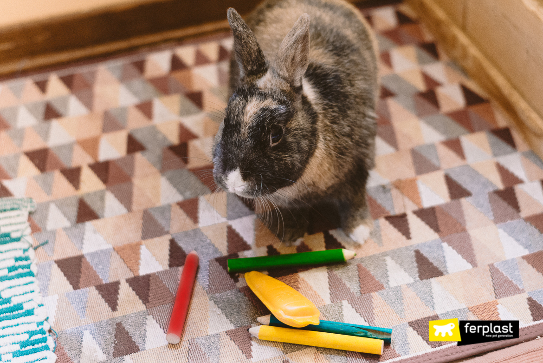 bonne-morsure-ferplast-naturel-pour-lapins