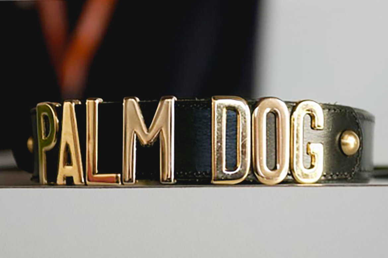 palme chien cannes film festival awards