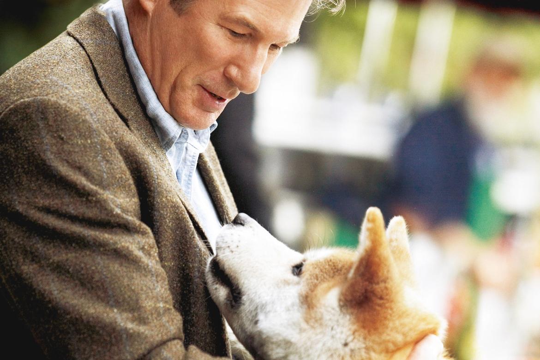 histoire chien Hachiko cinéma film animaux