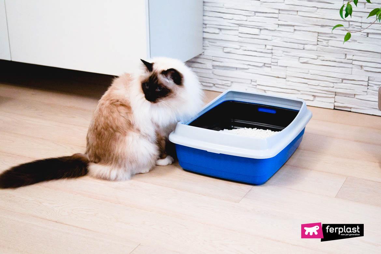 banheiro para gatos ferplast ariel
