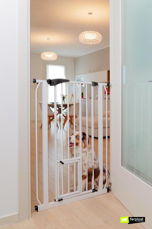 что то собака ворота в доме