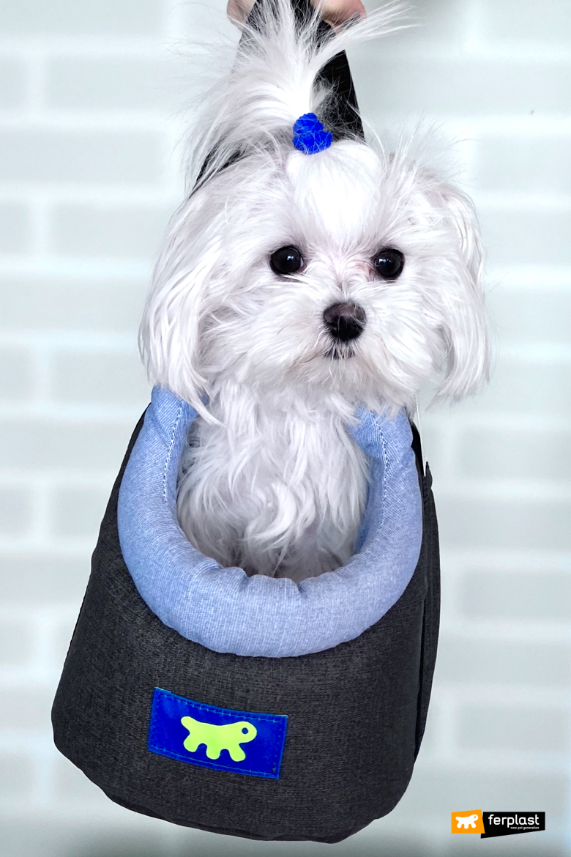 сумка переноска для маленькой собаки