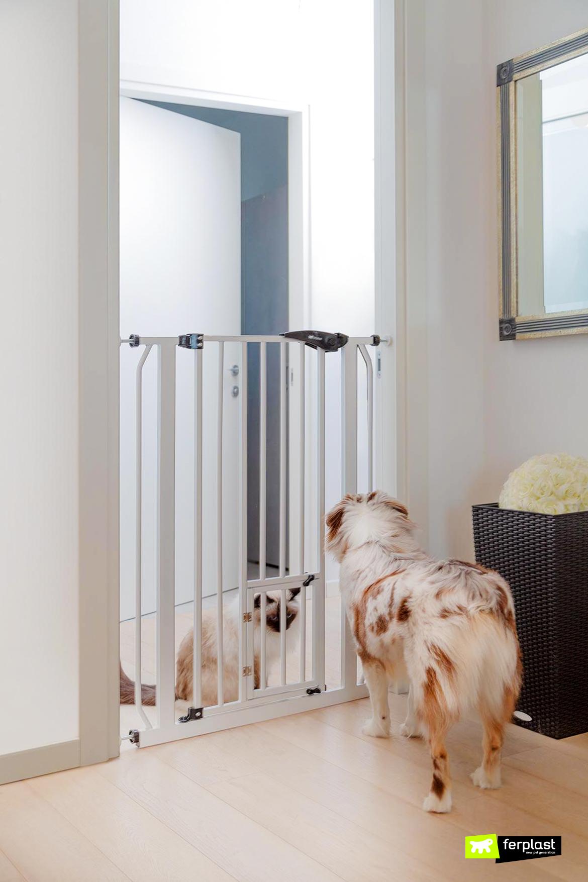 ворота-домашнее животное ворота собака кошка тот же дом