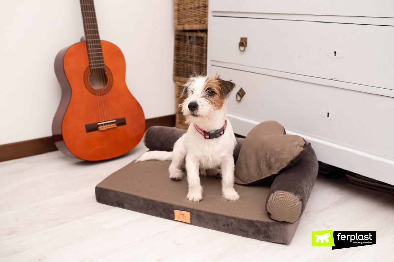 como escolher travesseiro para cachorro