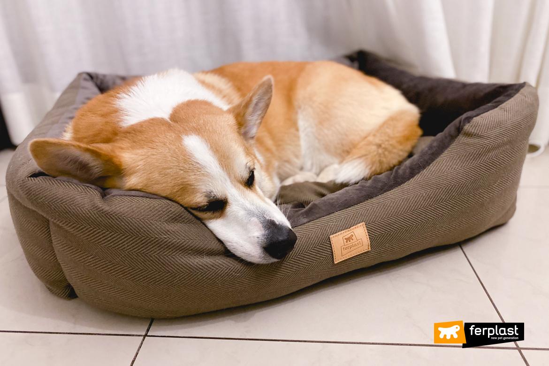 питомник диван для собаки ферпласт