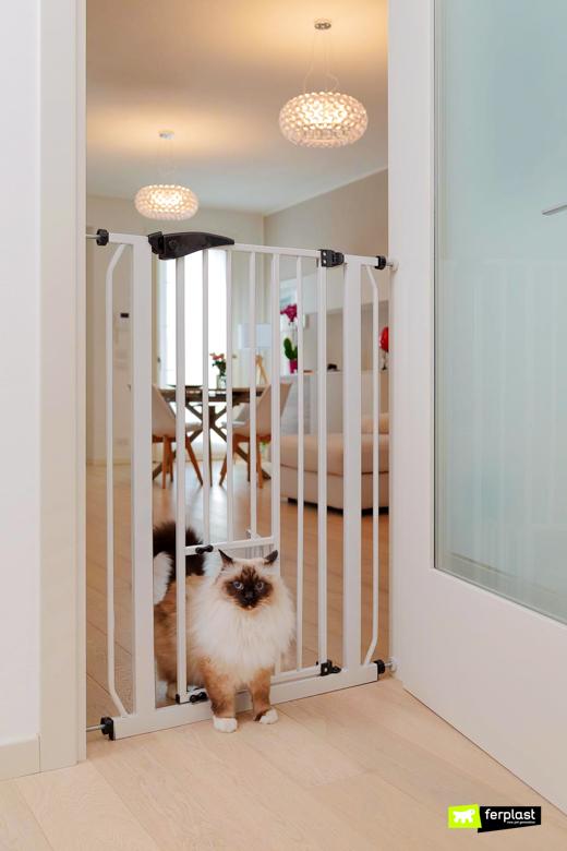 ferplast caractéristiques de la barrière pour animaux de compagnie