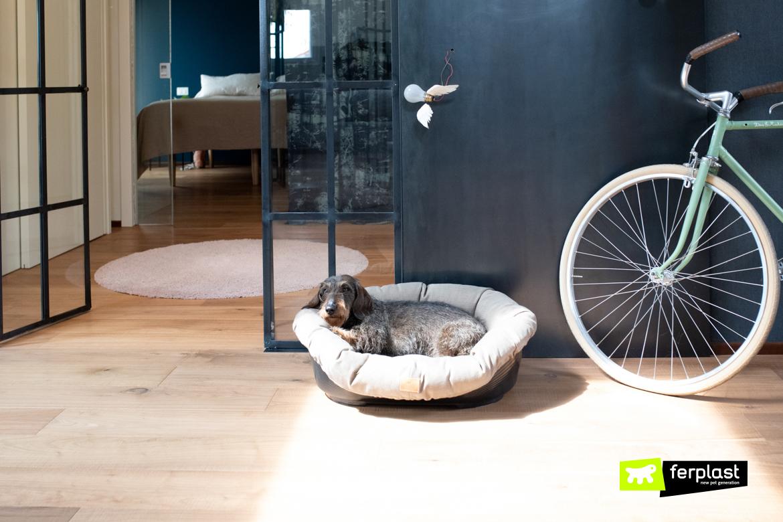 melhores travesseiros indestrutíveis para cães