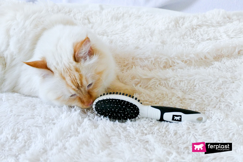 щетка для кошек ferplast