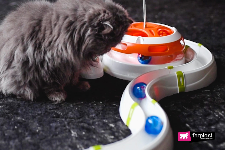 gioco per gatti Ferplast