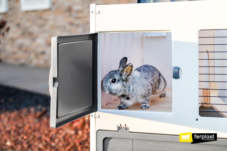 Лучшая клетка для кроликов