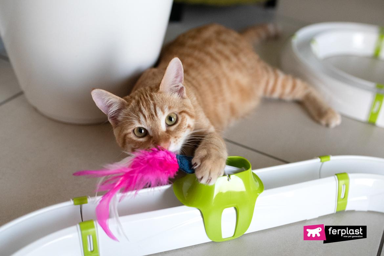 кошка живая игра ферпласт