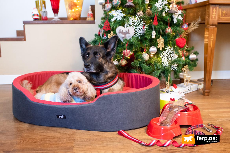atividades para fazer no natal com animais