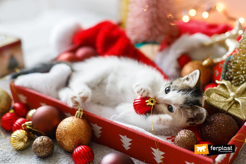 Очаровательный котенок играет с рождественской безделушкой в праздничном украшении