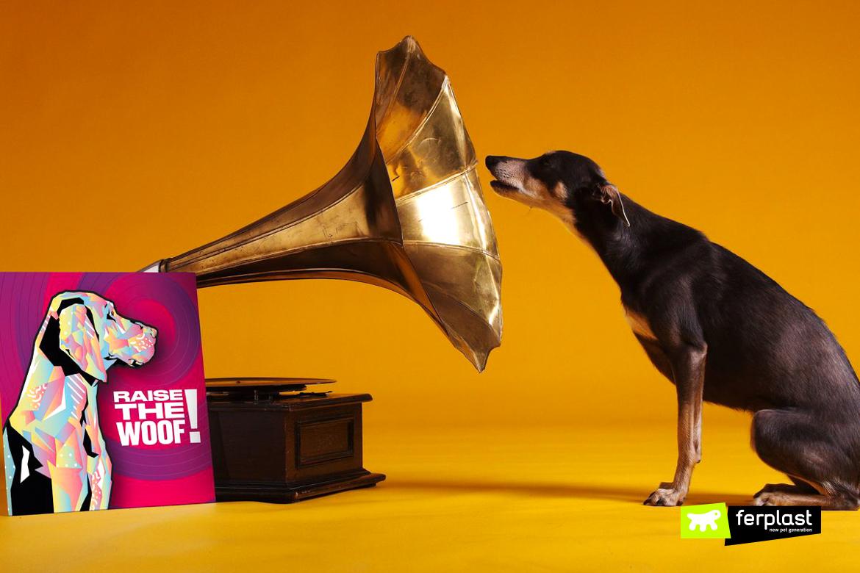 raise the woof musica di natale 2020