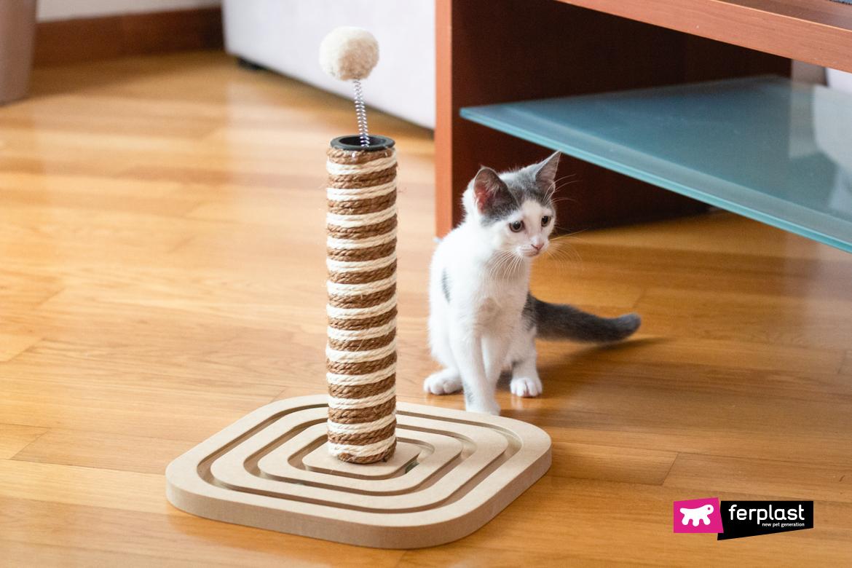 когтеточка кошка лучшая цена