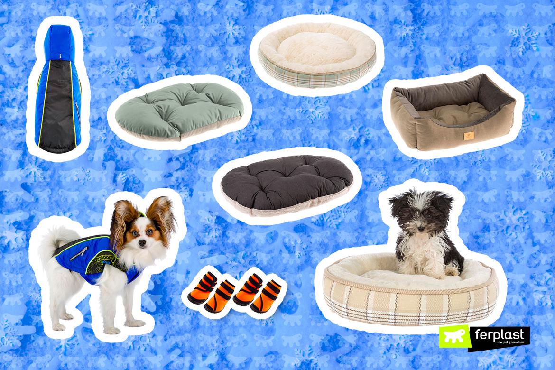 аксессуары для собаки зима 2021