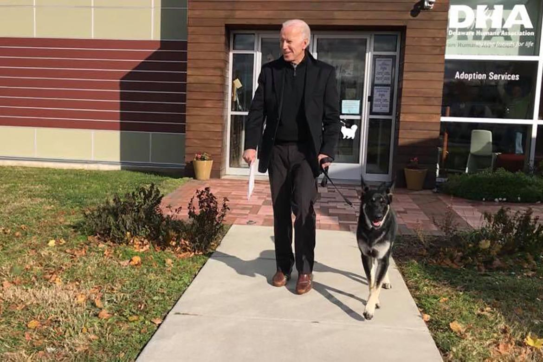Joe Biden adotado ferplast presidente eua pastor alemão
