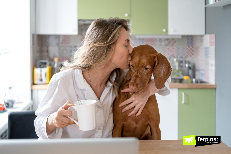 собачьи поцелуи смысл