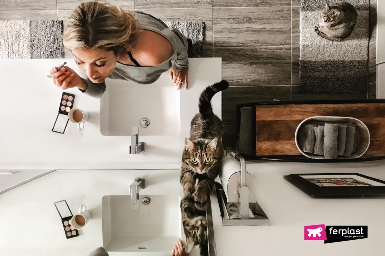 кошка следует за мной в ванной почему