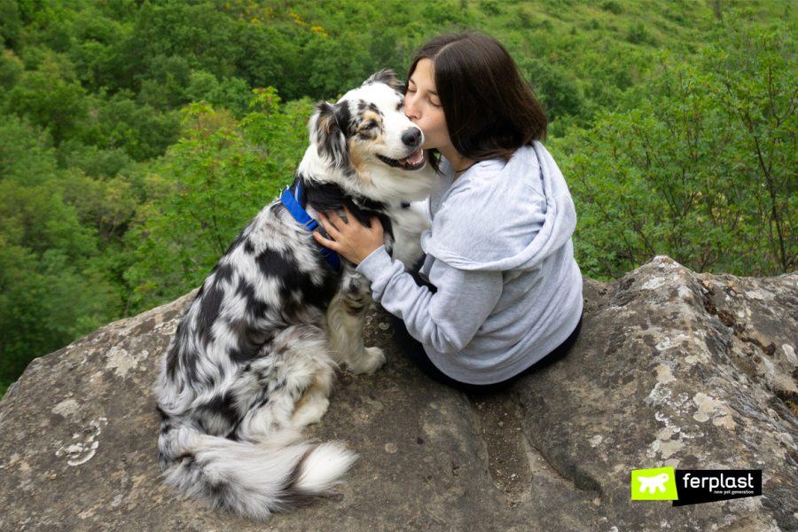 Do Dog Like Kisses?