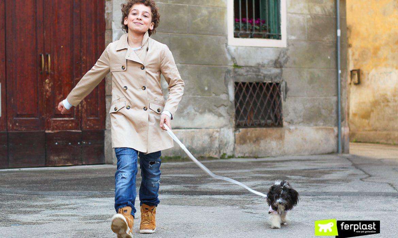 guinzagli per cani norme codice penale passeggiata con cane