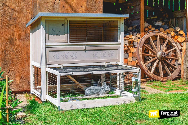 Coniglio nella casetta in legno con beverino Ferplast