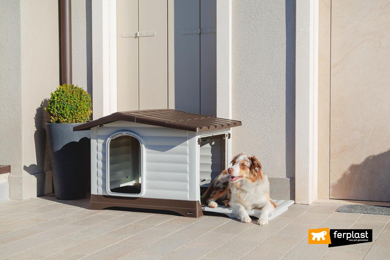 Cane accanto alla casetta in plastica riciclata Ferplast