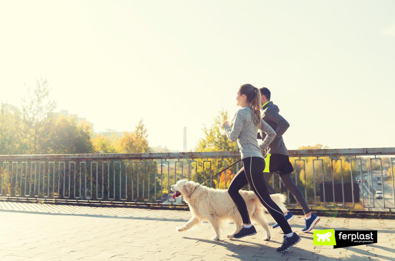 menino e menina correm com o cachorr