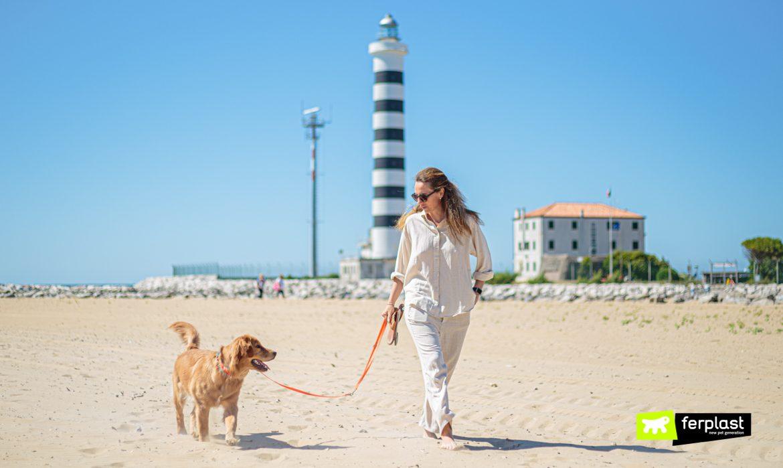 Cane e padrona a passeggio sulla spiaggia