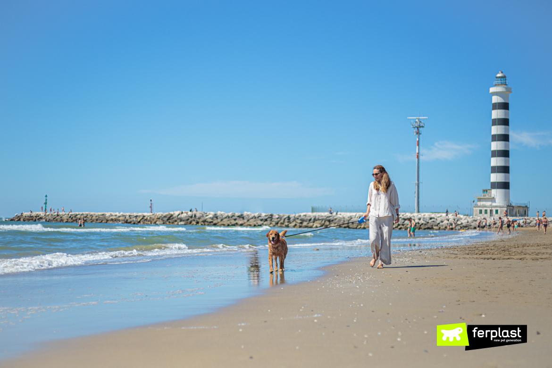 Flippy One di Ferplast al mare con il cane
