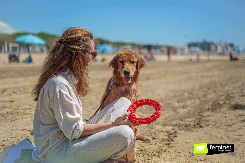Smile, gioco da portare al mare con il cane