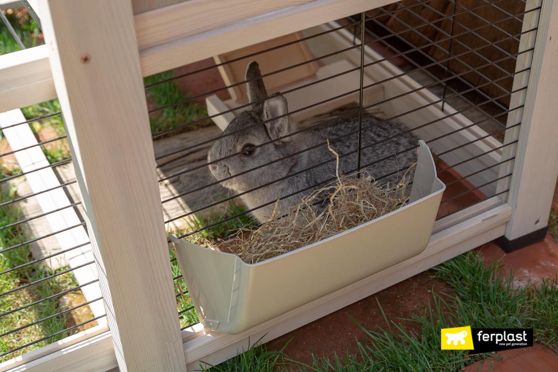 Coniglio nella gabbietta Ferplast