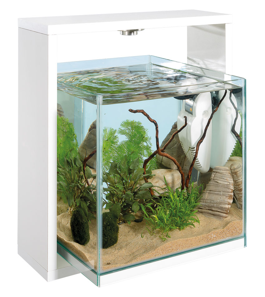 Arredare casa con un acquario di design love ferplast for Acquario arredamento