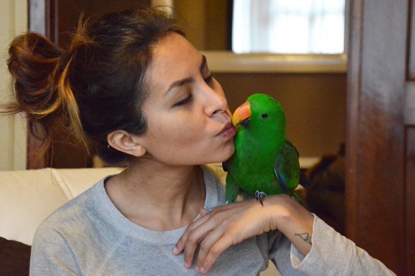 paolina-pappagallo-kiwi