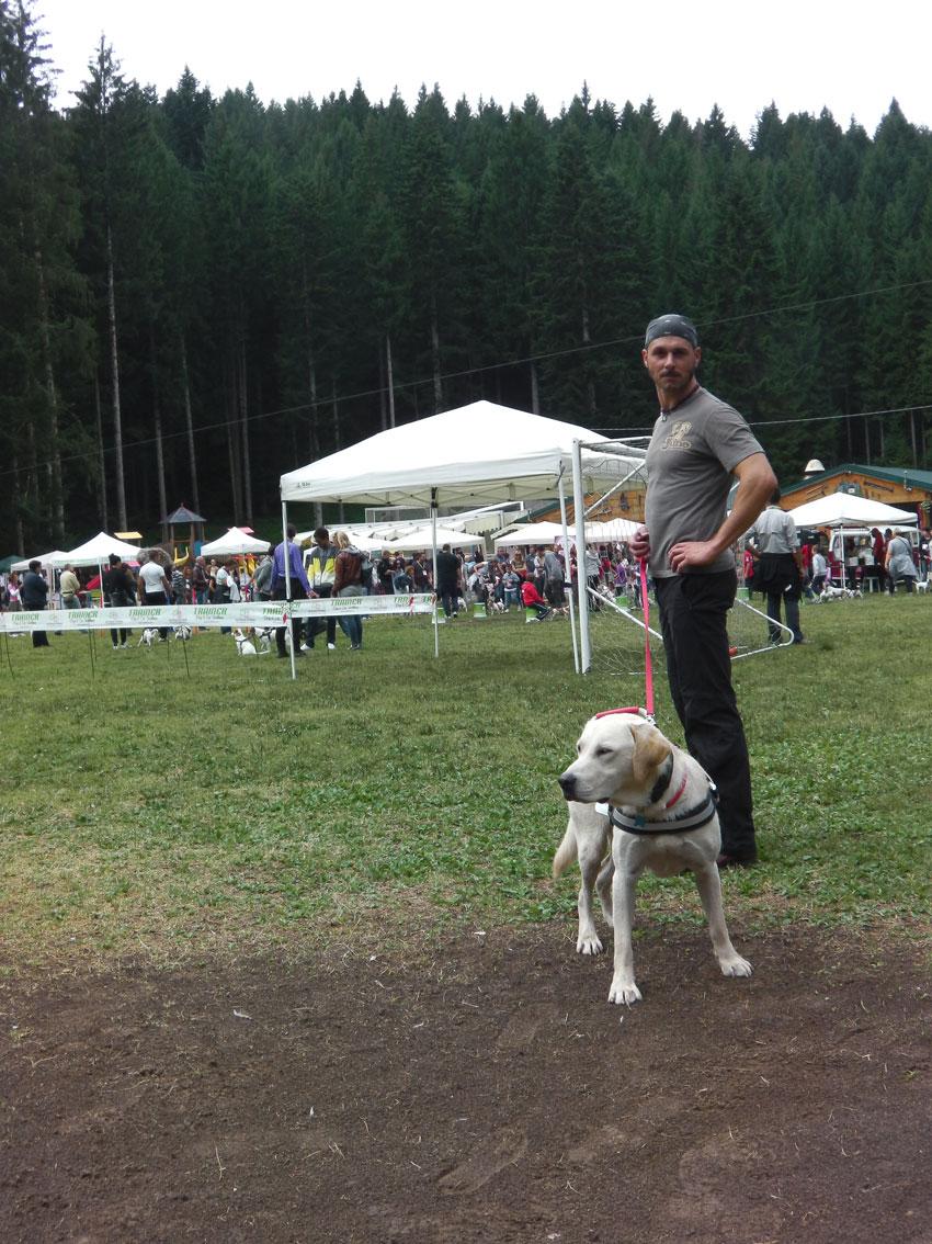 addestrare-cani-disabili