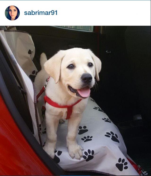 instagram-preferiti-mese-luglio