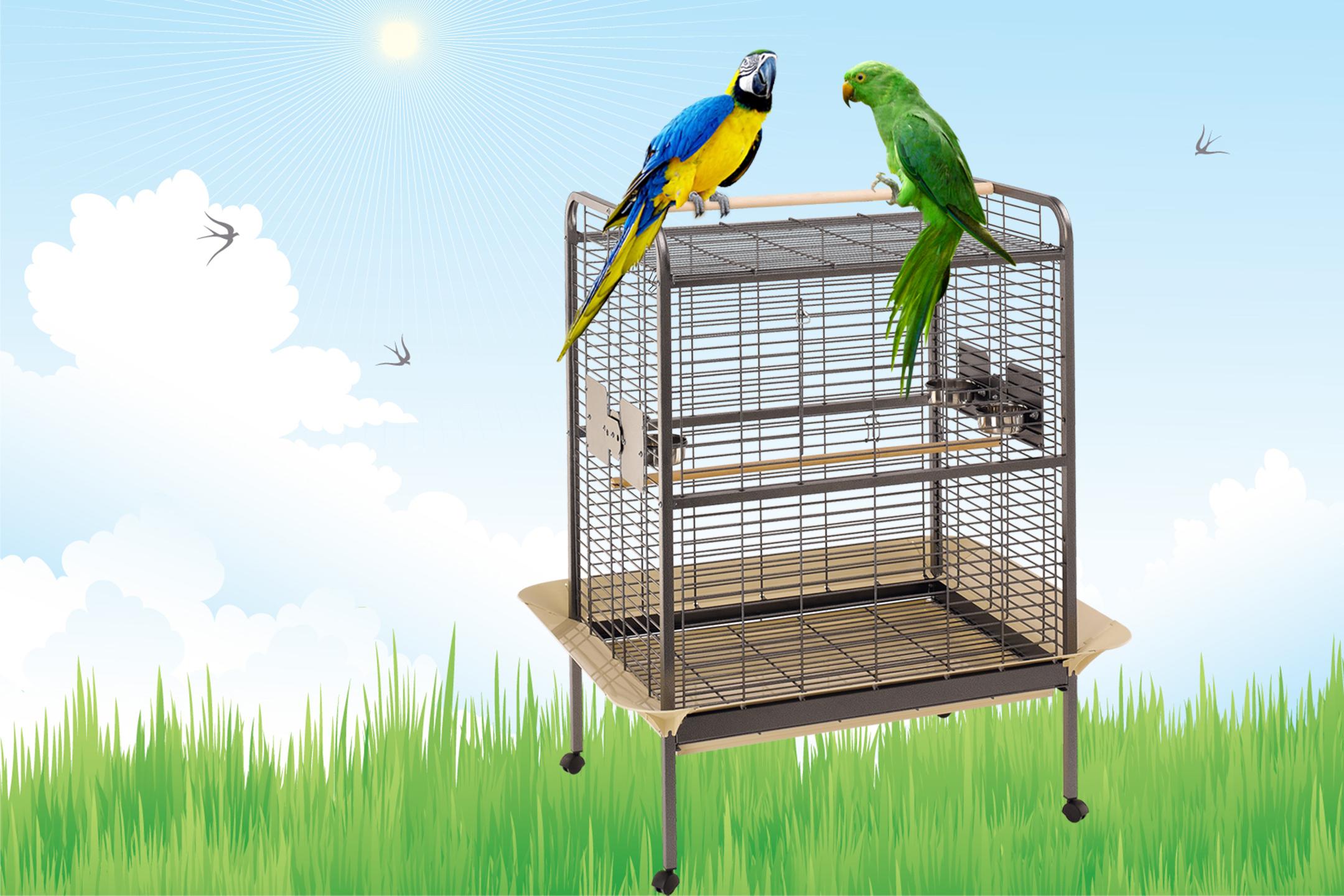 adottare-pappagallo-expert-gabbia-ferplast