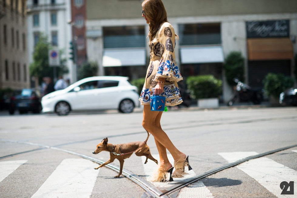 animali-fashion-week-moda-sfilate