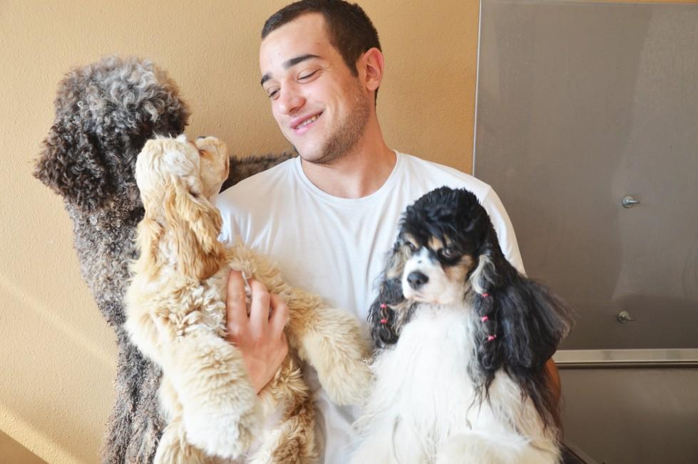 ferplast-toelettatura-silver-dog-cura-cane-pelo