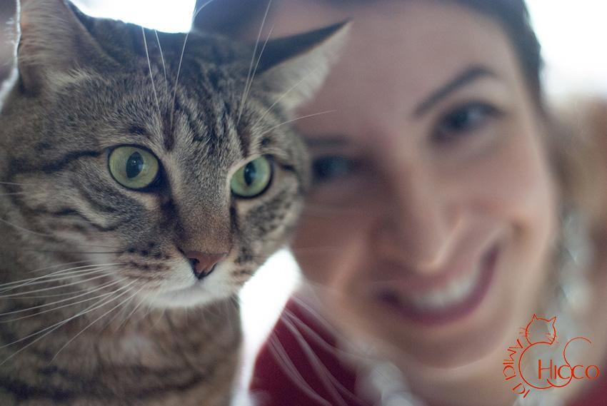 amici-di-chicco-associazione-adottare-gatto-adulto-ferplast-blog