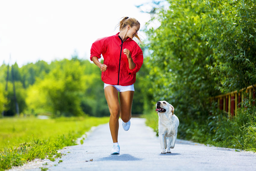 corsa-cane-running-jogging-dog