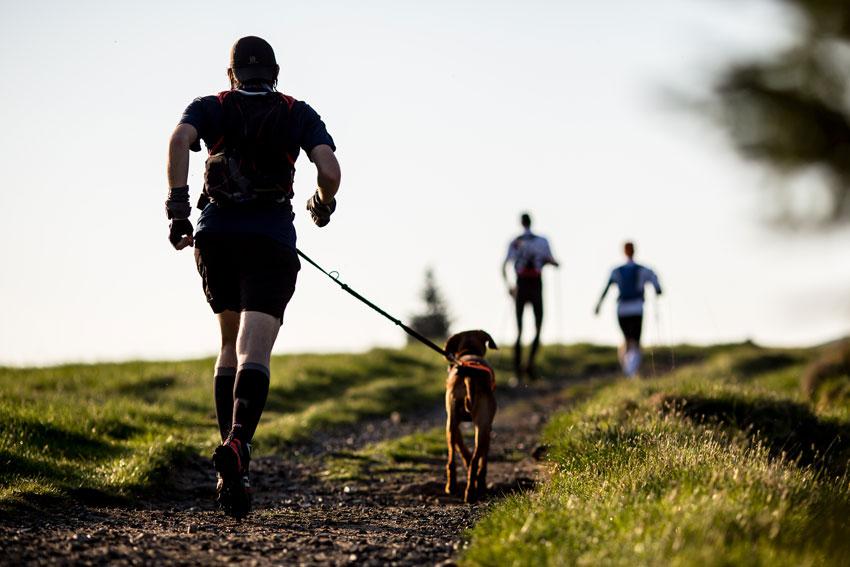 uomo che corre con cane