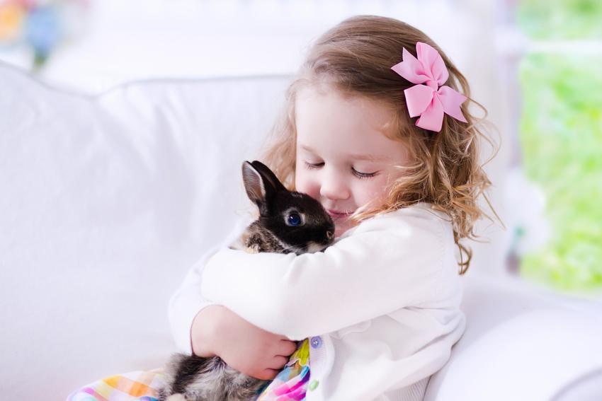abituare-coniglio-lettiera