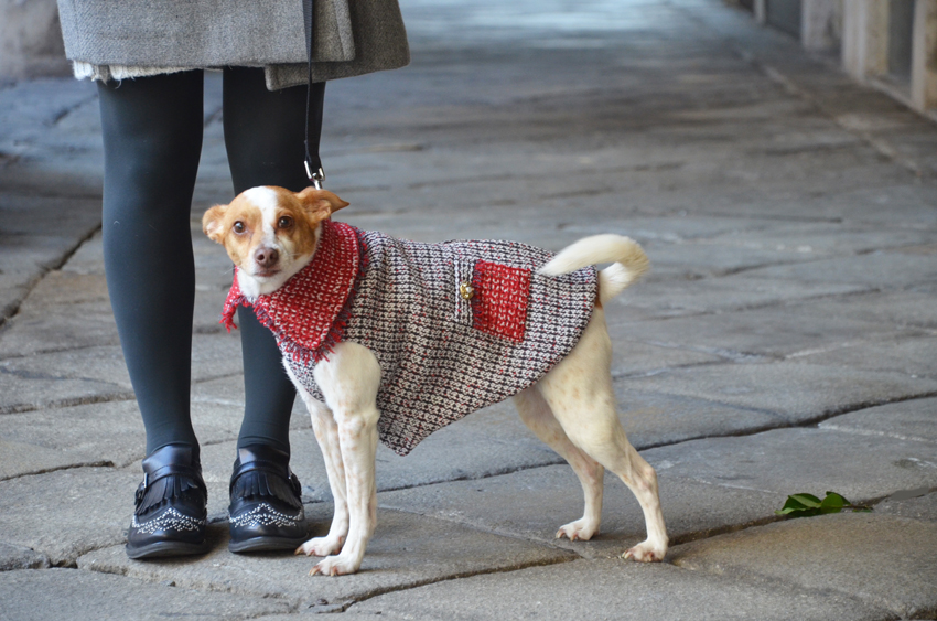 bau-bau-moda-coat