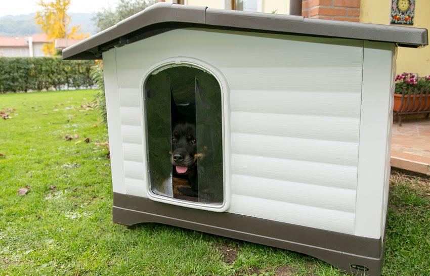 proteggere il cane dal freddo Rottweiler dentro cuccia per esterni in plastica Dogvilla di Ferplast
